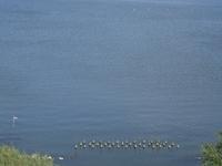 Lake Kasumigaura