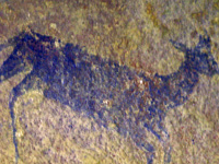 Waterberg Biosphere