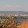 Lysimachia Lake