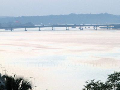 Mandovi Bridge View