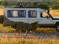 3 Days Masai Mara Exclusive Safari
