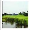 Matoa National Golf