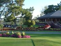 Mesa Country Club