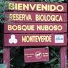 Monteverde Cloud Forest Preserve