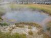 Monument Geyser Basin - Yellowstone - Wyoming - USA