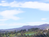 Moorilla Estate