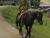 Mosotho Horse Man - Lesotho