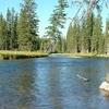 Mountain Ash Creek