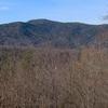 Mount Collins
