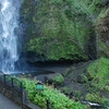 Multnomah Falls Bottom View OR