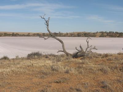 Murray River National Park