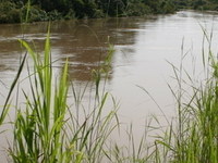 Mékrou River
