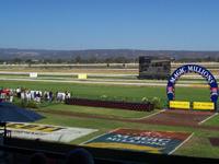 Morphettville Racecourse