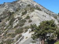 Mount Harwood