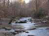 Nancy Creek By Murphey Candler Park