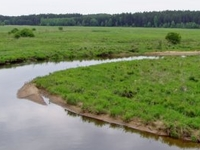 Narew River Valley