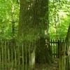 Nature Preserve Sokole