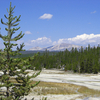 Norris-Canyon Blowdown - Yellowstone - USA