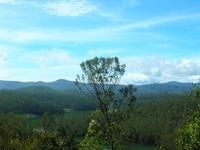 Montañas Nilgiri