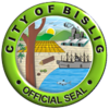 Official Seal Of City Of Bislig