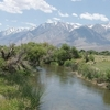 Owens River On Poverty Hills
