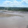 Cornwallis River Near Low Tide