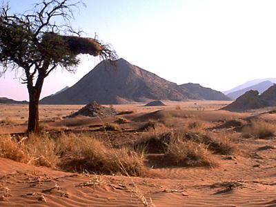 Panorama Naukluft Park