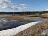 Pelican Creek Nature Trail - Yellowstone - USA