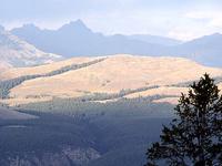 Bosque Petrificado - Ridge muestras