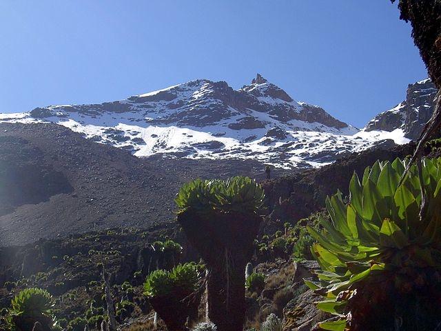 6 Days Mt Kenya Climbing Tour Photos