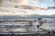 Punta Arenas - Patagonia
