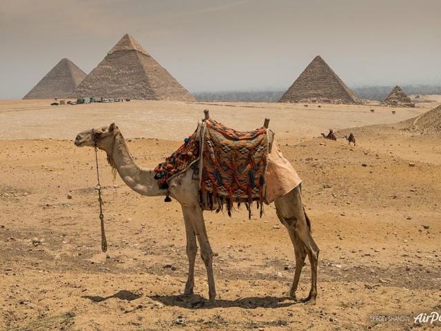 Egypt Pyramids Tour Photos