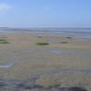Lower Saxon Wadden Sea National Park
