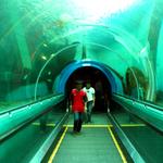 Rayong Aquarium