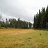 Riddle Lake Trail - Yellowstone - USA