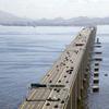 Rio Niteri Bridge