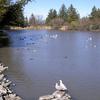 Roberts Lake