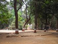 Ryewood Park