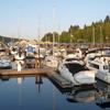 Reed Point Marina Slips