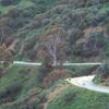 Runyon Canyon Park