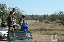 Safari In Kanha