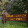 Samuel P. Taylor State Park