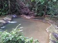 En En Manora Forest Park