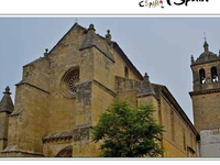 Santa Marina Church in Aguas Santas