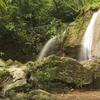 Sap Chomphu Arboretum