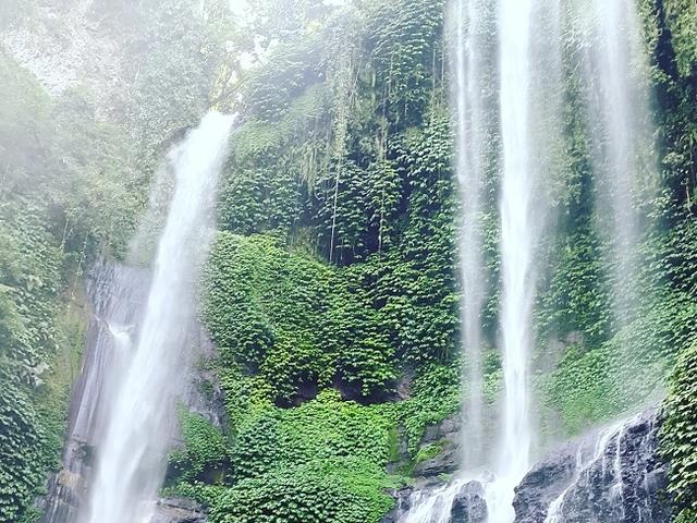 Sekumpul Jungle Trekking Photos