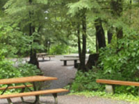 Settlers Cove State Recreation Site
