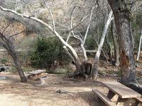 Seven Springs Site