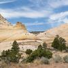 Sheets Gulch Slot Canyon Hikes - Capitol Reef - Utah - USA