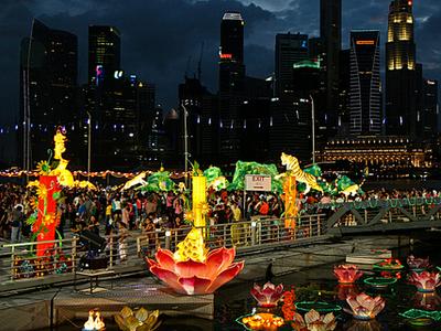 Singapore Skyline With Flowers